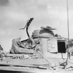Afrika Korps Damaged Panzer III Lang of the Afrika Korps