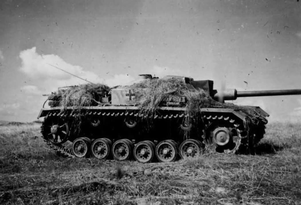 StuG Ausf F of Hermann Goering Division   World War Photos