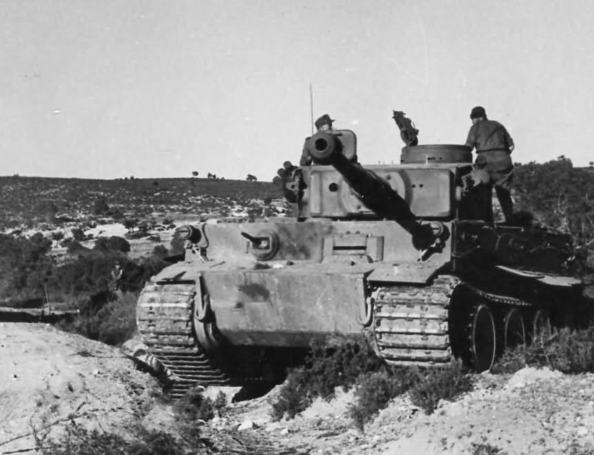 Tiger I Number 121 Of Schwere Abteilung 501 In Tunisia Dak