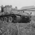Tiger tank 232 of schwere Panzer Abteilung 505