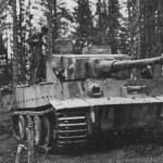 Tiger tank schwere panzer abteilung 502 113