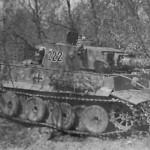 Tiger tank schwere panzer abteilung 503 222