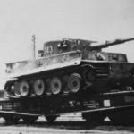 Tiger tank schwere panzer abteilung 503 243