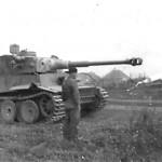 Tiger tank schwere panzer abteilung 503 334