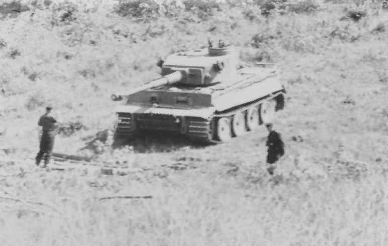 Panzer VI Tiger of Schwere Panzer-Abteilung 503, tank number 321 5