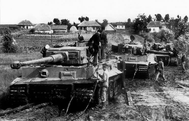 Tiger I tanks number 332 321 331 of sPzAbt. 503 during field exercises