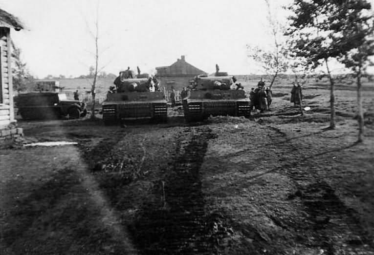 Tiger I schwere panzer abteilung 505