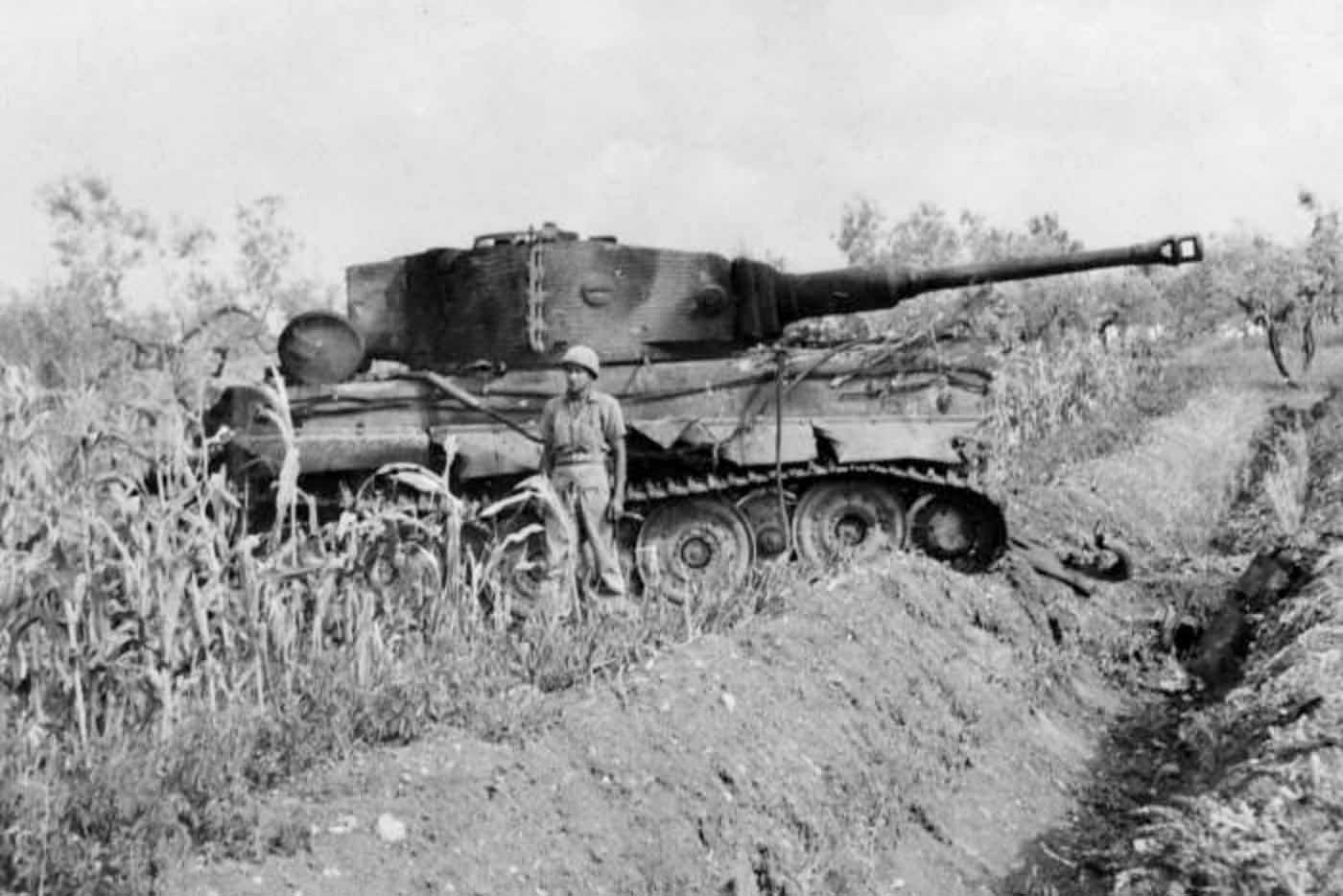 Tiger tank of the Schwere Panzer Abteilung 508, Villa Bonnaza Italy