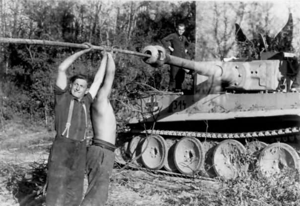 Early production heavy tank Tiger I of the Schwere Panzer Abteilung 502, tank number 314