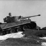 Panzer VI Tiger 812 Tiki of 8 schwere Kompanie Division Das Reich