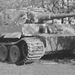 Tiger 1943 eastern front