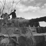 Tiger of the schwere Panzer Abteilung 502. Tank number 308