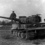 Tiger tank 115 schwere panzer abteilung 502 1944