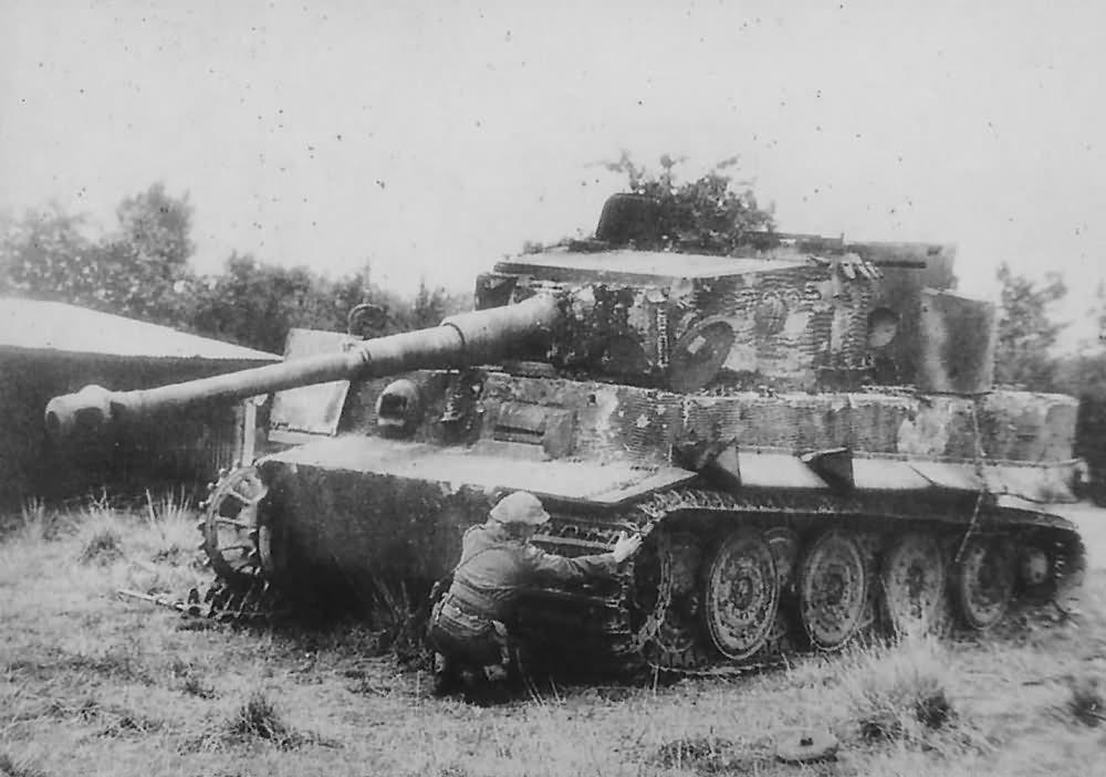 Tiger 223 Schwere Ss Panzer Abteilung 102 World War Photos