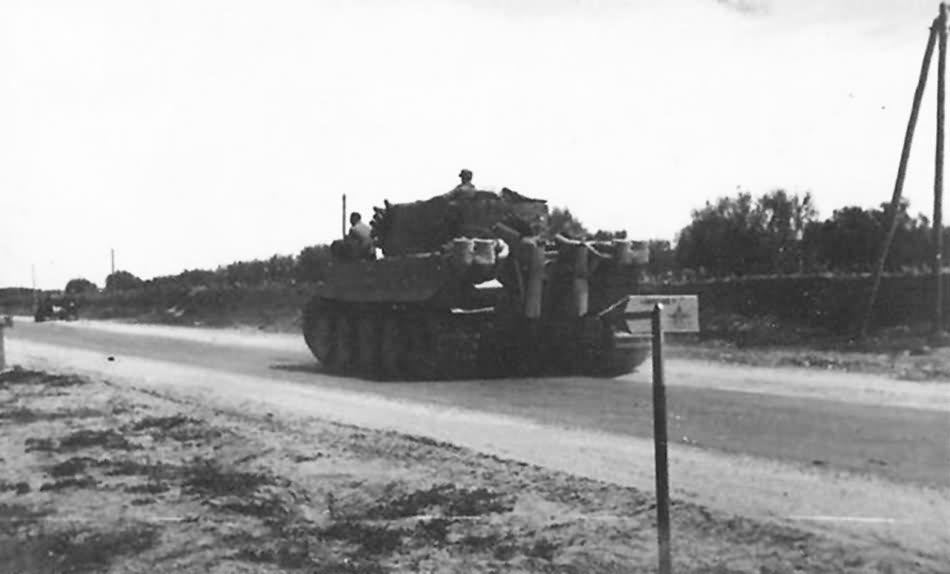 Tiger I Afrika Korps DAK