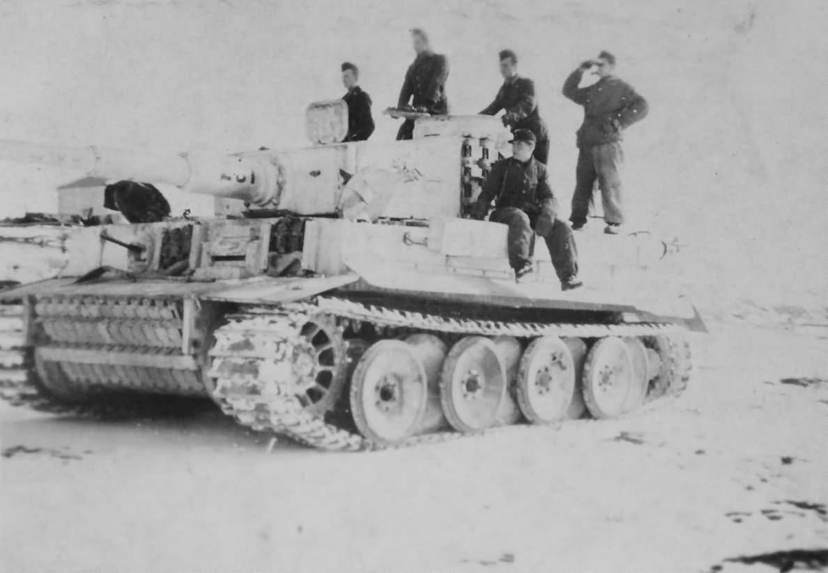 Panzer VI Tiger of Schwere Panzer-Abteilung 505, tank number 231, winter camouflage