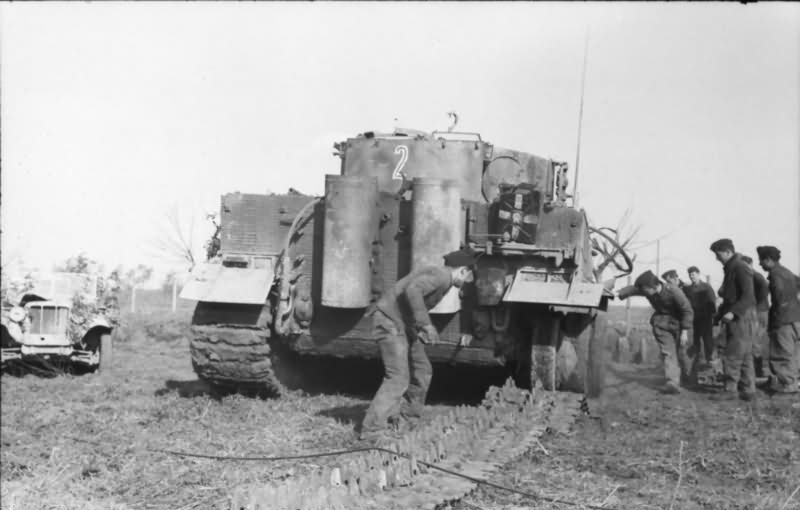 Tiger I tank number 2 of 2/schwere Panzerabteilung 508 Anzio Italy 1944 – rear view