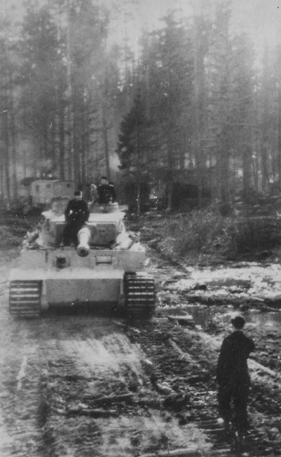 "Tiger ""3"" from of schwere Panzer-Abteilung 502 – Eastern Front 1943"