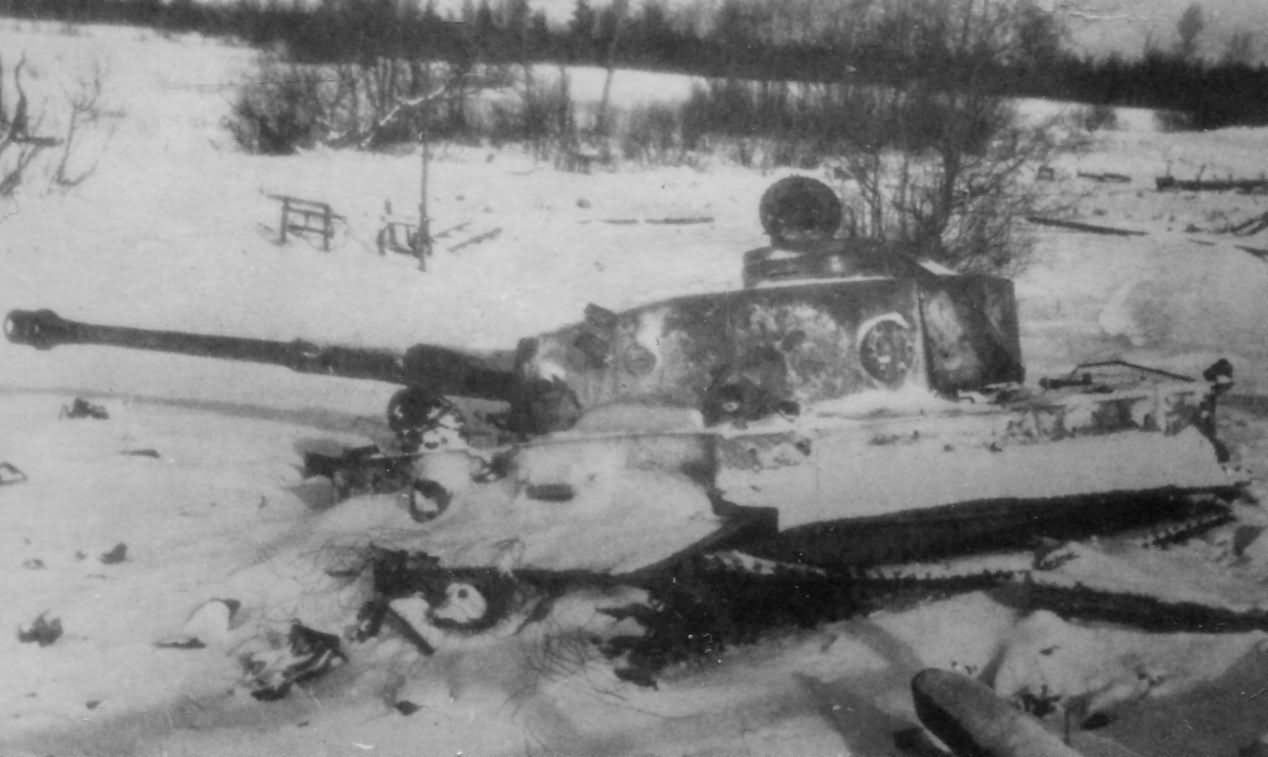 Tiger eastern front winter