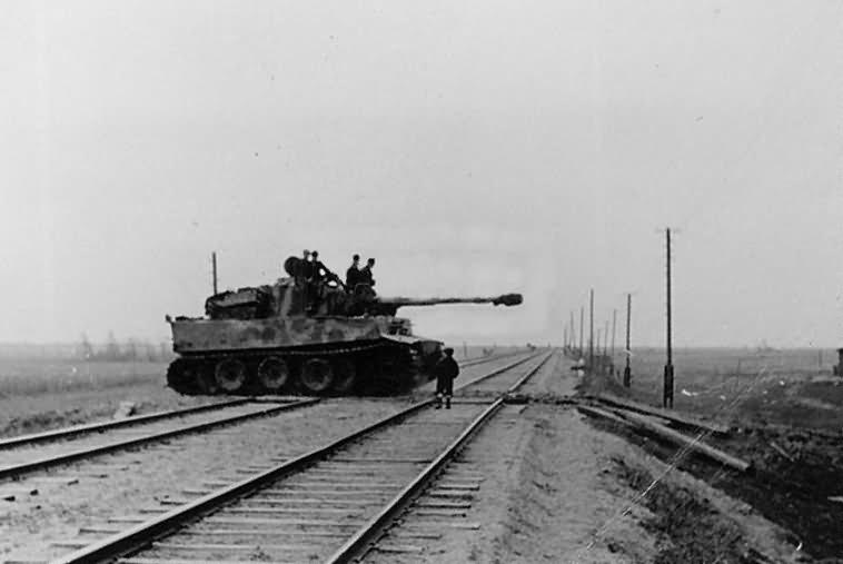 Tiger tank 17