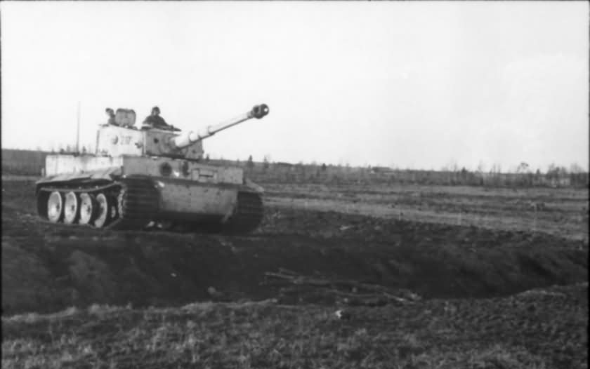 Tiger tank 217 of of schwere Panzer-Abteilung 503 – winter camo