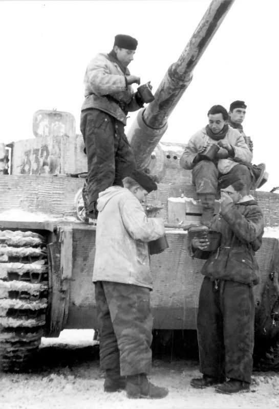 Tiger winter camo Russia 2