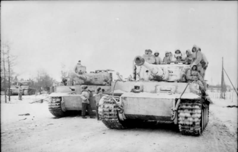 Tiger I number 223 of Schwere Panzer Abteilung 501 winter camo eastern front 3