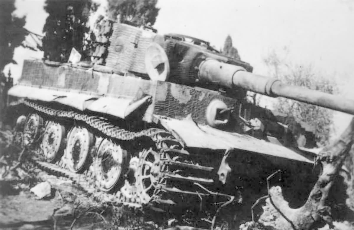 Tiger zimmerit 9