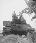 captured Tiger 2