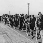 Amerikan pow tunisia dak afrika corps