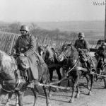 Kavallerie Waffen-SS