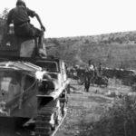 L6/40 Dalmatia 1943 3