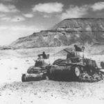 M14 41 Division Littorio 1943