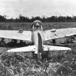 A6M3 Zero (Hamp) at Buna 1943
