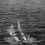 E13A Jake Sinking off Formosa 1944