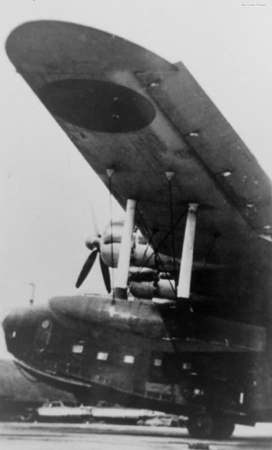 H8K2 left wing
