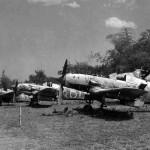 Ki-61-I Kai Hei Tony of the 19 Sentai Luzon 1945