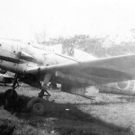 Ki-61 Hien (Tony) of the 19th Sentai Philippines 1945