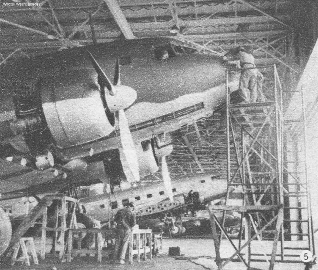 L2D Tabby 1943 4