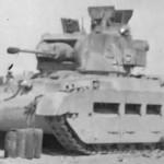 Infanterie Panzerkampfwagen Mk.II 748(e) Matilda II tank of the Afrika Korps 19