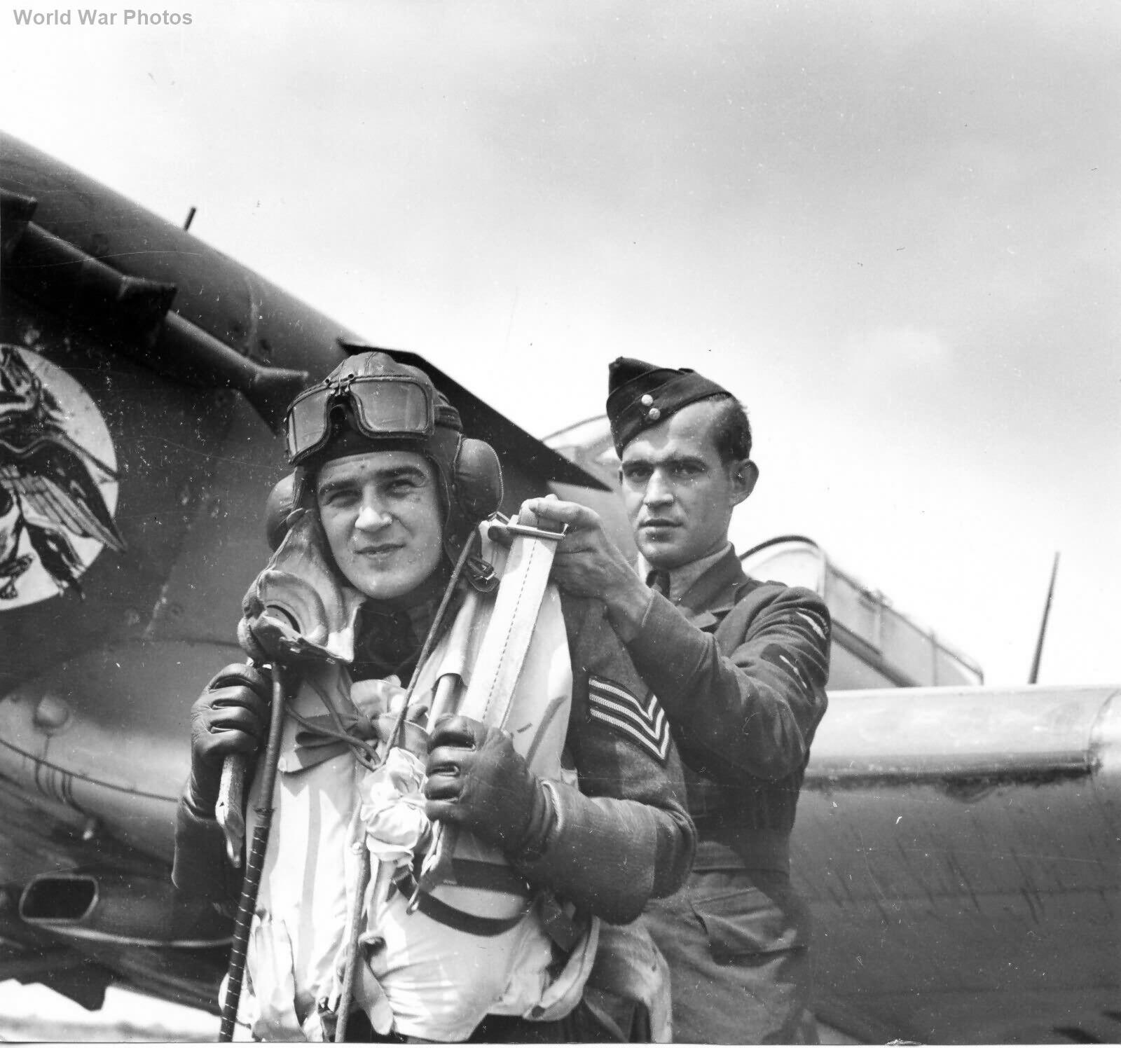 Hurricane 401 Sqn Sgt Levesque