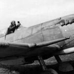 Maj Virgil C. Fields Jr commander of the 307th FS 31st Fighter Group 1944