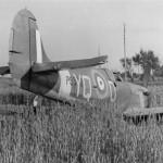 Spitfire Mk II code YQ-D of No. 616 Squadron RAF rear