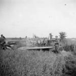 Supermarine Spitfire of No. 74 Squadron RAF forced landed