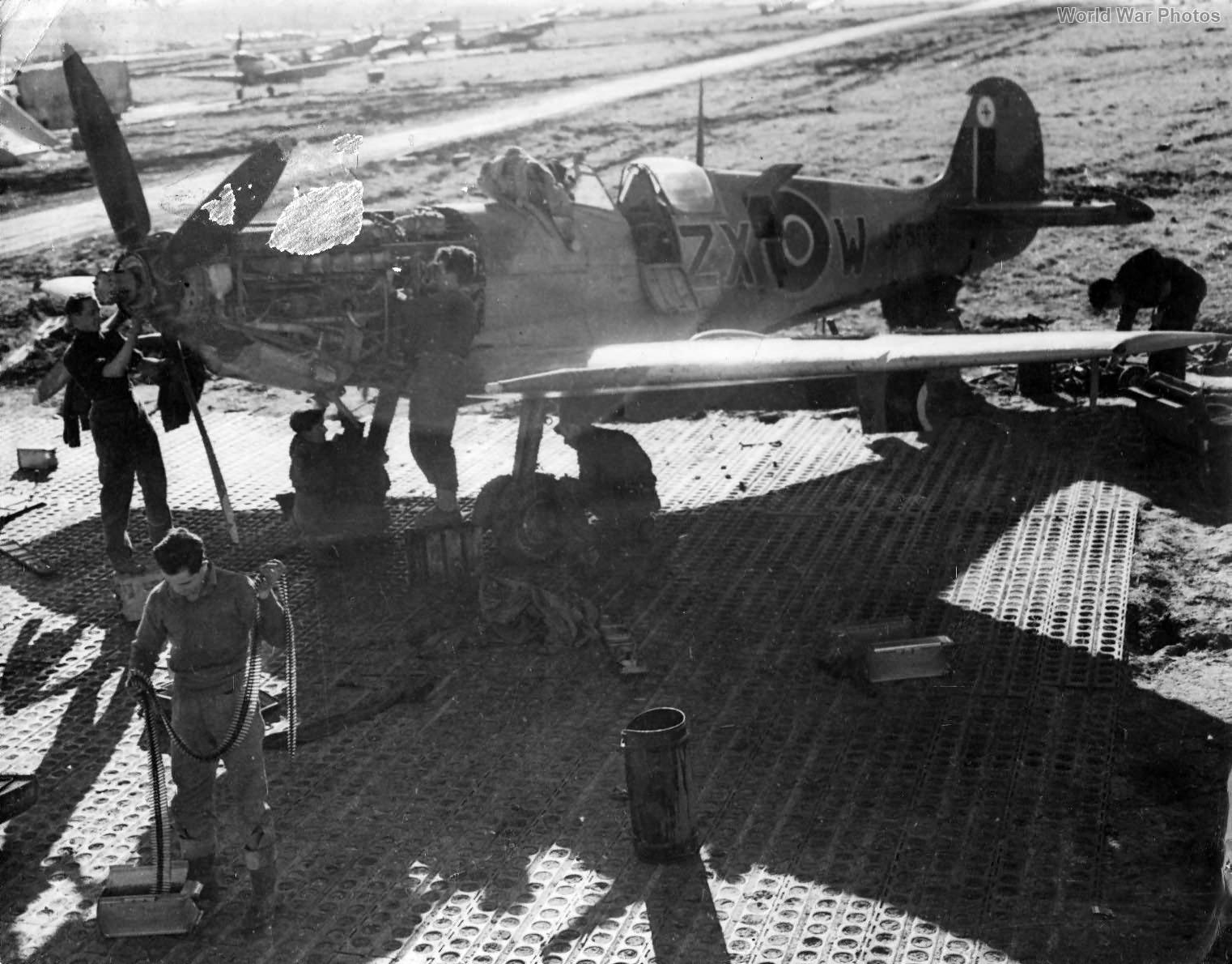 Spitfire LFVIII JF503 ZX-W February 1944