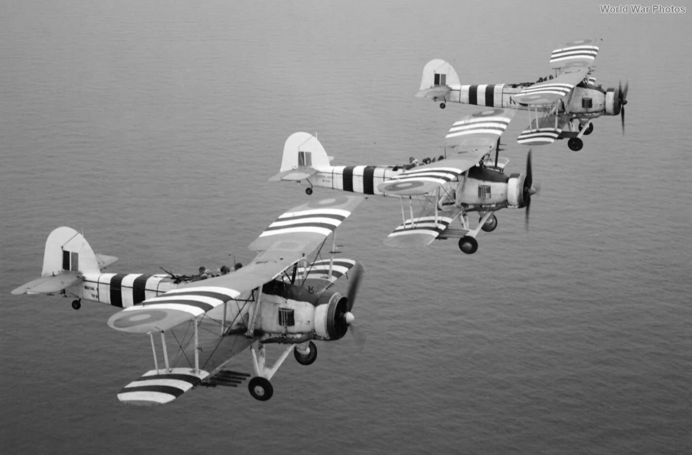 Swordfishes from 816 Squadron August 1944