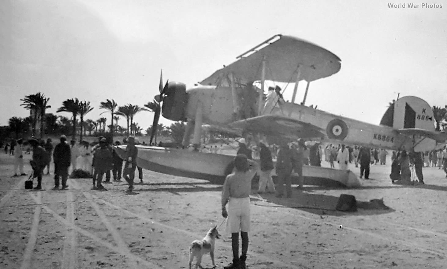 Swordfish of No. 700 Squadron from HMS Warspite