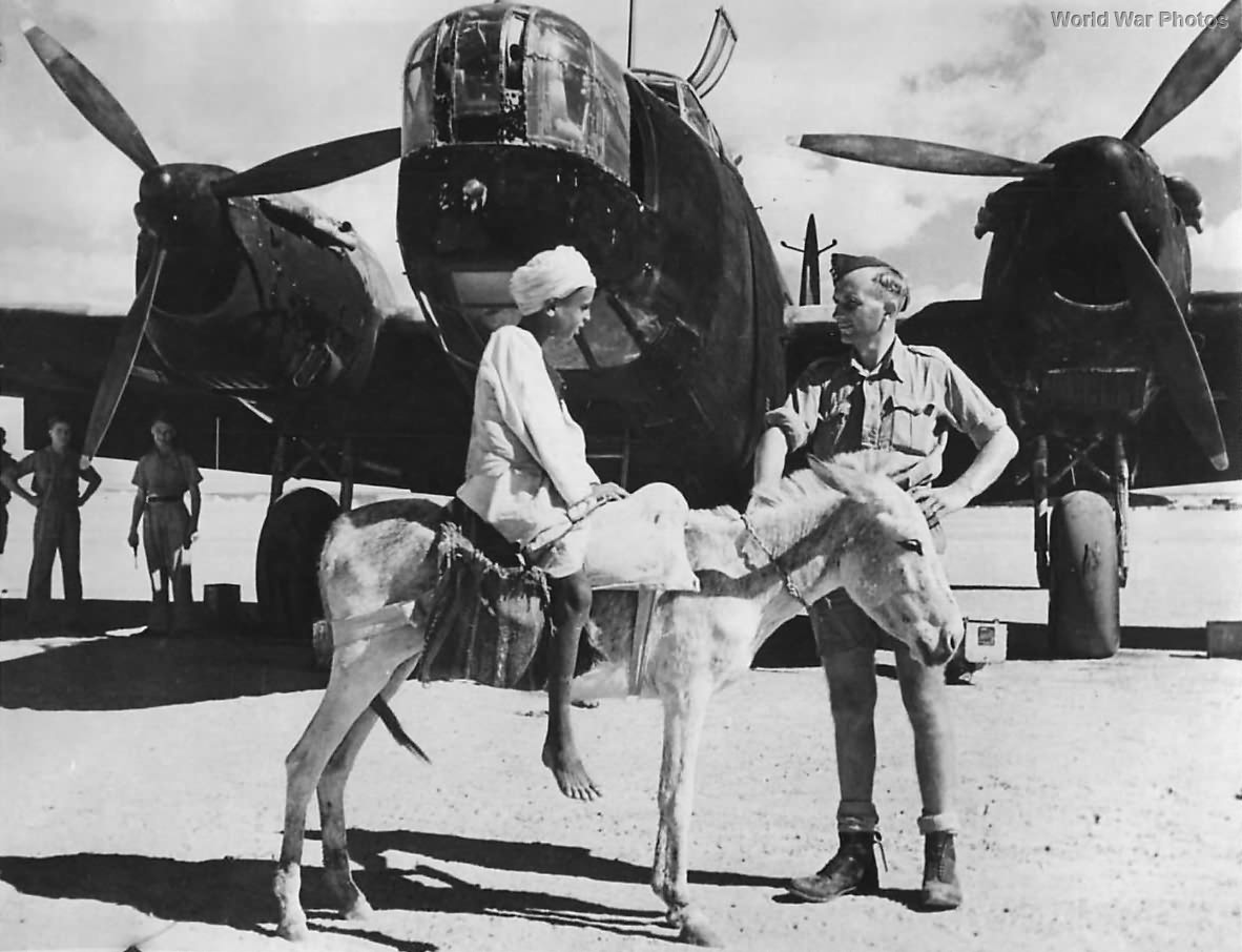 Native Boy on Donkey with Wellington in Middle East 1942