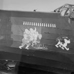 wellington with nose art