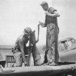 Crew Load Belts of Ammo on A-36 Apache in North Africa 1943